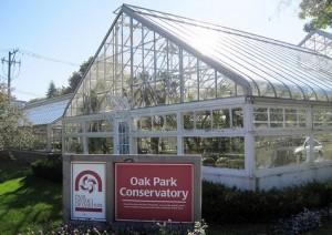 Moving Boxes Oak Park Conservatory